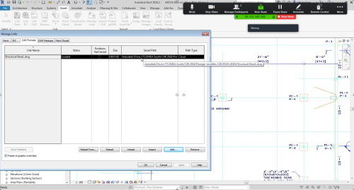 DWG linked to a Revit model